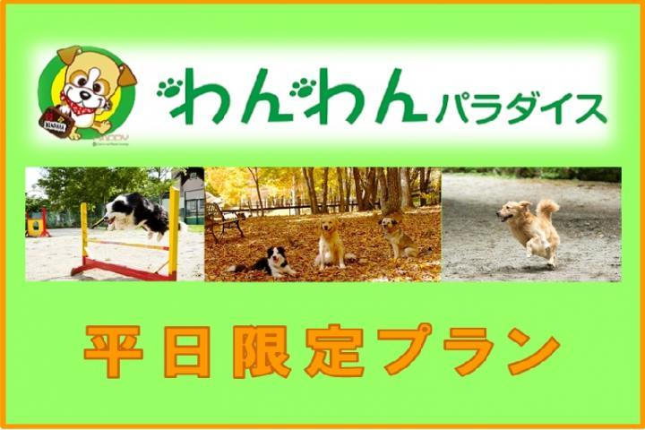 ■【平日限定】 1泊2食付き お手軽プラン 2021
